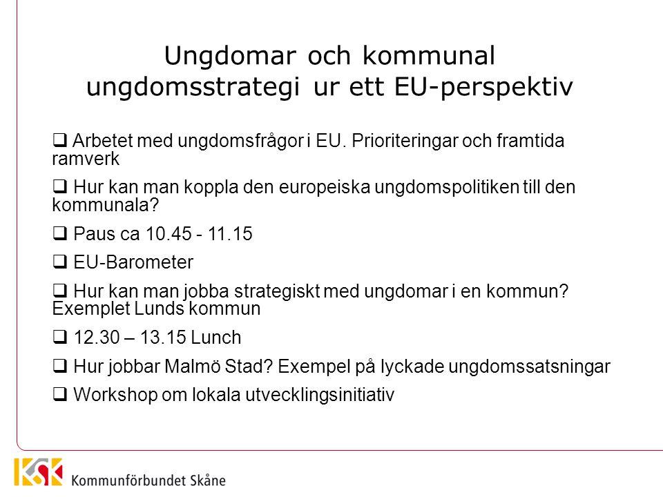 Ungdomar och kommunal ungdomsstrategi ur ett EU-perspektiv  Arbetet med ungdomsfrågor i EU. Prioriteringar och framtida ramverk  Hur kan man koppla