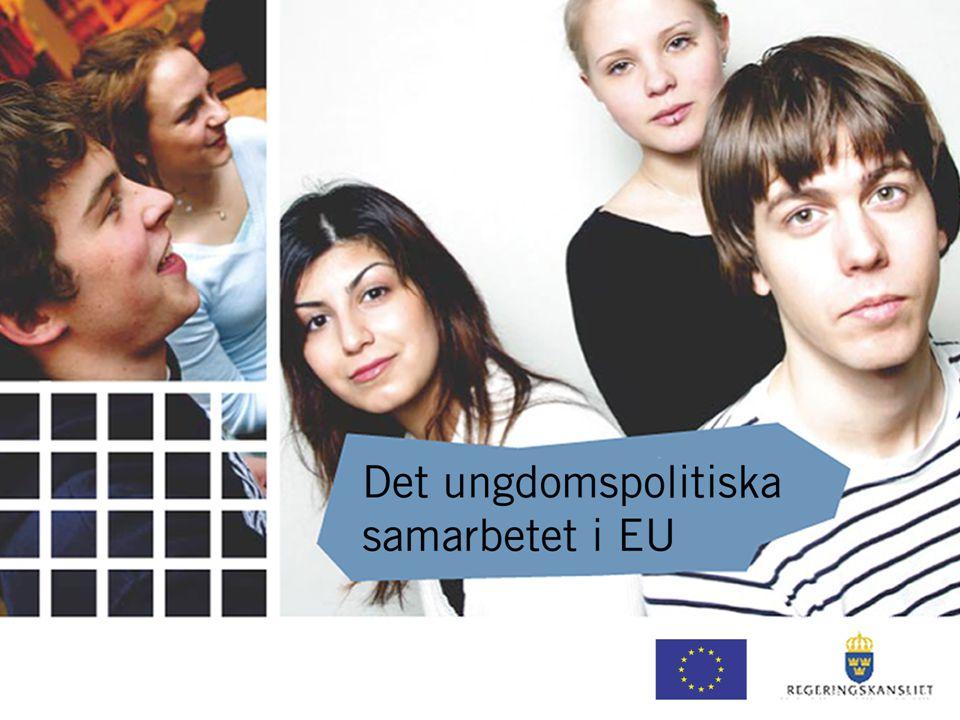Ungdomspakten i Sverige Nationellt handlingsprogram för tillväxt och sysselsättning Samarbete mellan fackdepartement Insatser för att förbättra utbildningen, sänka ungdomsarbetslösheten, uppmuntra företagande, förbättra möjligheterna att kombinera yrkesliv och familjeliv osv.