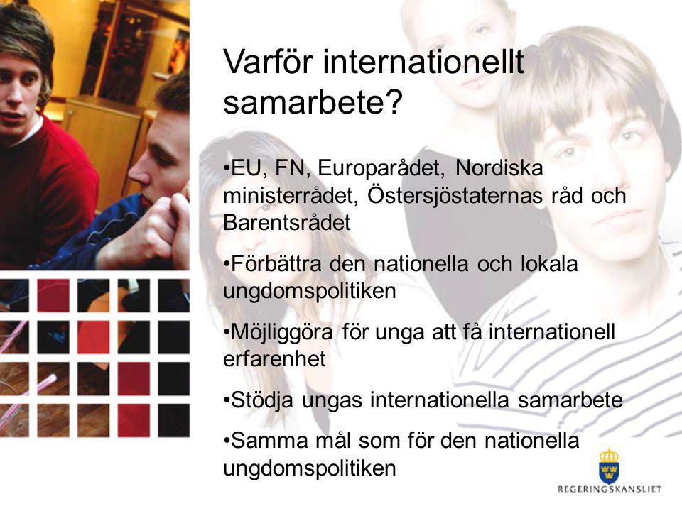 Samarbetet i EU 3 huvudsakliga samarbetsområden: 4 gemensamma målområden (vitbok) -ungas deltagande -bättre information till unga -främja ungas volontärverksamhet -bättre kunskap om unga Integrering av ett ungdomsperspektiv på andra politikområden (vitbok) Europeiska ungdomspakten