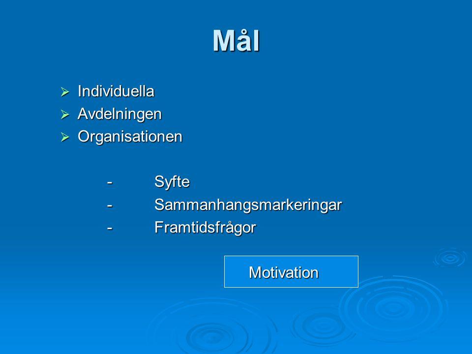 Mål  Individuella  Avdelningen  Organisationen - Syfte - Sammanhangsmarkeringar -Framtidsfrågor Motivation