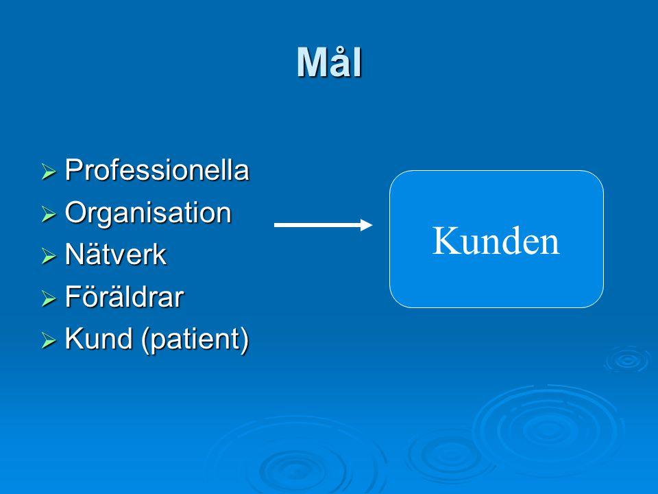 Mål  Professionella  Organisation  Nätverk  Föräldrar  Kund (patient) Kunden