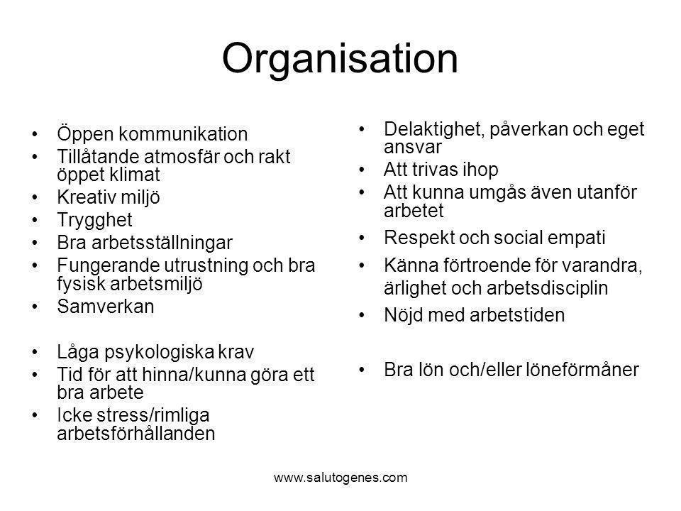 www.salutogenes.com Organisation Öppen kommunikation Tillåtande atmosfär och rakt öppet klimat Kreativ miljö Trygghet Bra arbetsställningar Fungerande