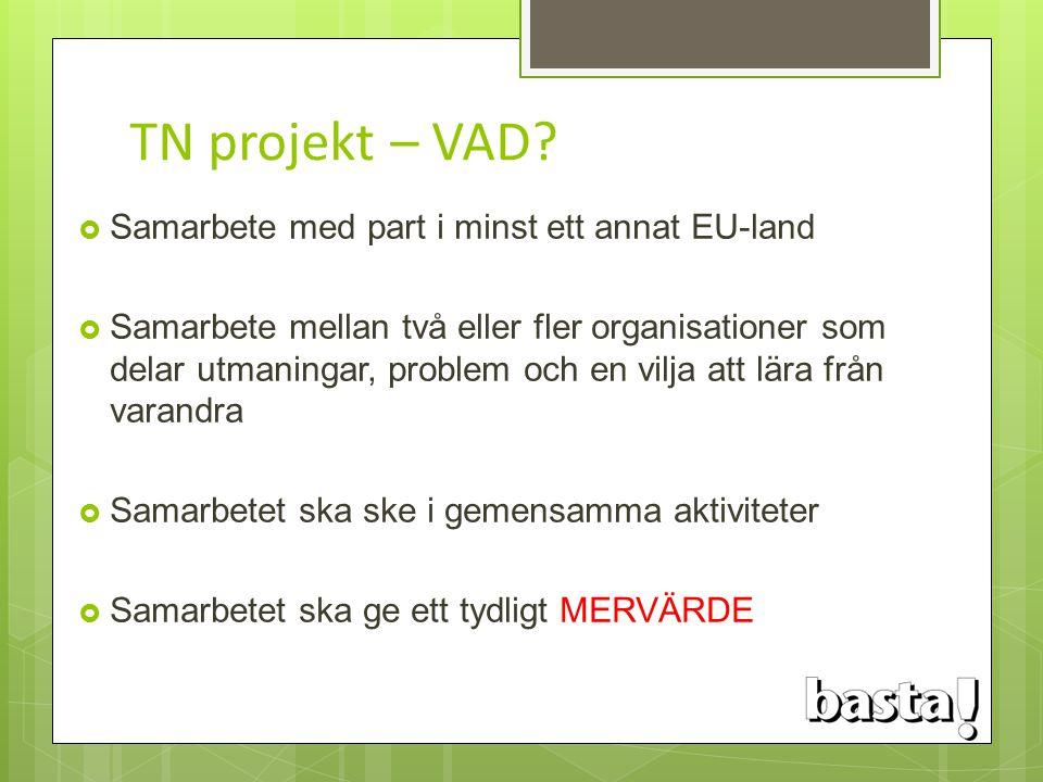 TN projekt – VAD?  Samarbete med part i minst ett annat EU-land  Samarbete mellan två eller fler organisationer som delar utmaningar, problem och en