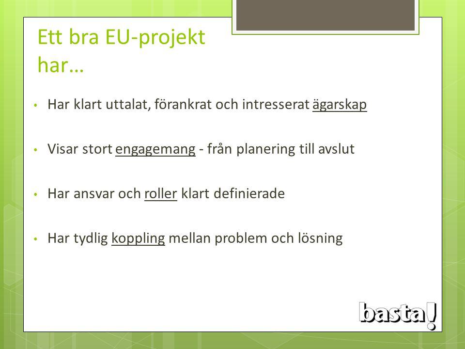 Ett bra EU-projekt har… Har klart uttalat, förankrat och intresserat ägarskap Visar stort engagemang - från planering till avslut Har ansvar och rolle