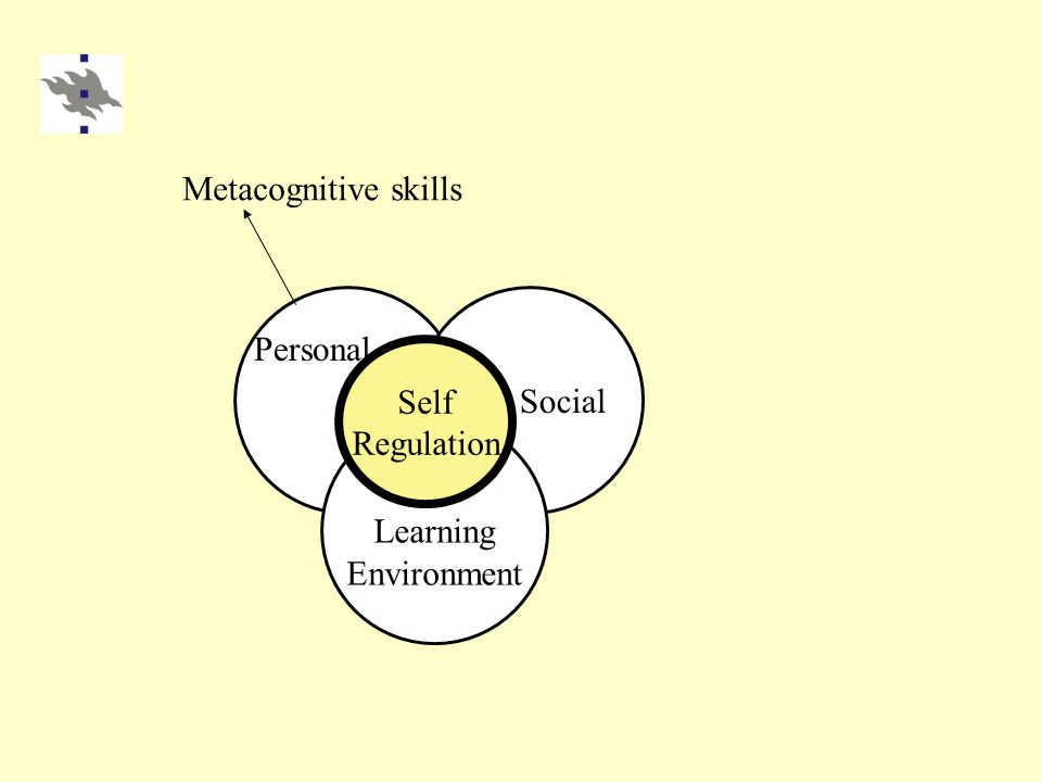 Learning Environment Social Self Regulation Personal Metacognitive skills