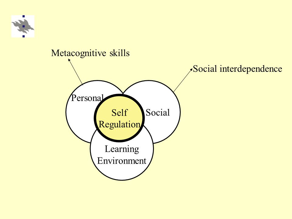 Learning Environment Social Self Regulation Personal Social interdependence Metacognitive skills