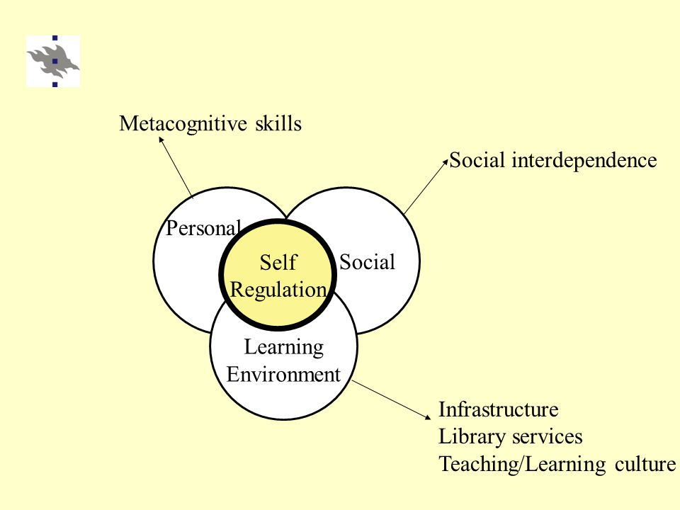 Learning Environment Social Self Regulation Personal Infrastructure Library services Teaching/Learning culture Social interdependence Metacognitive skills