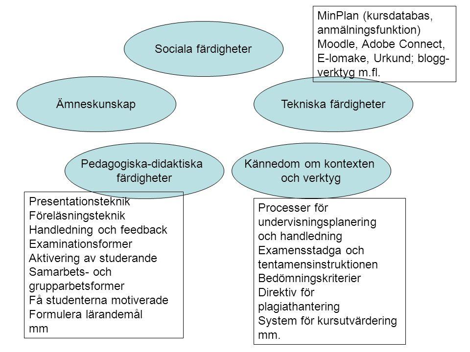 Ämneskunskap Pedagogiska-didaktiska färdigheter Kännedom om kontexten och verktyg Sociala färdigheter Processer för undervisningsplanering och handled