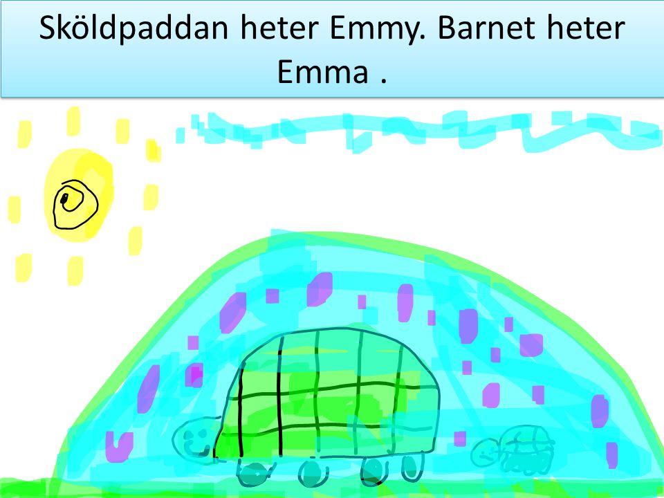 Sköldpaddan heter Emmy. Barnet heter Emma.