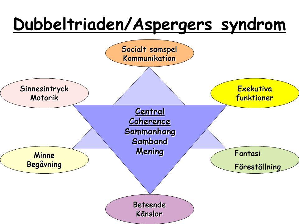 Dubbeltriaden/Aspergers syndrom MinneBegåvning Socialt samspel Kommunikation Central Coherence SammanhangSambandMening Exekutiva funktioner BeteendeKä