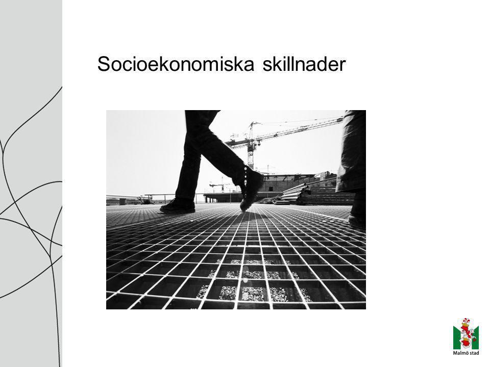 Socioekonomiska skillnader