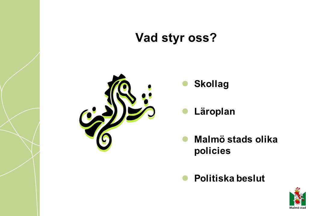 Vad styr oss? Skollag Läroplan Malmö stads olika policies Politiska beslut