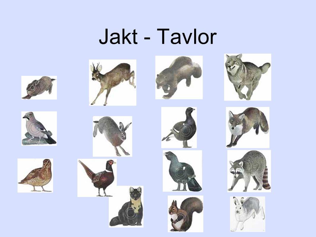 Jakt - Tavlor