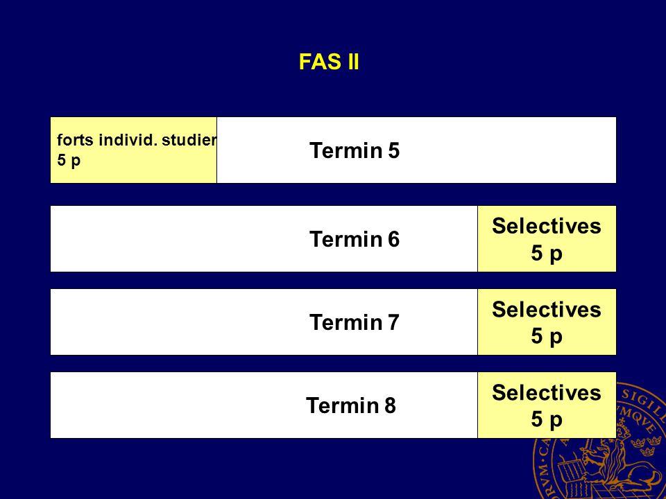 Termin 6 Termin 7 Termin 8 FAS II Termin 5 forts individ.