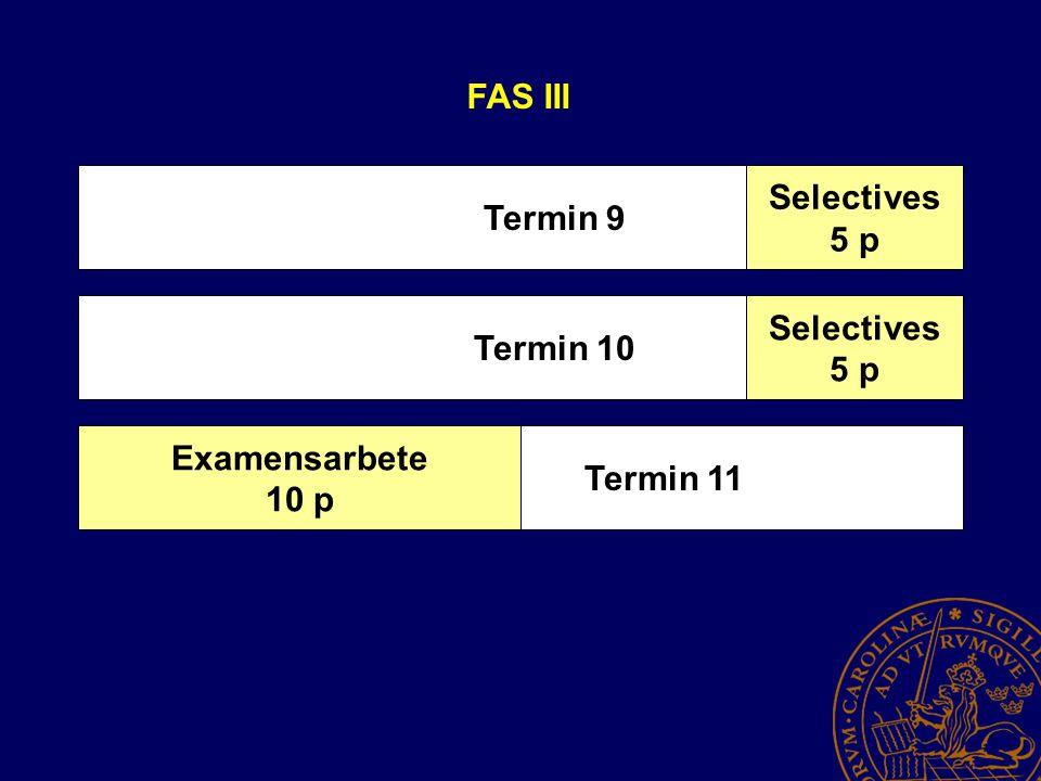 Termin 9 Termin 10 Termin 11 FAS III Selectives 5 p Selectives 5 p Examensarbete 10 p