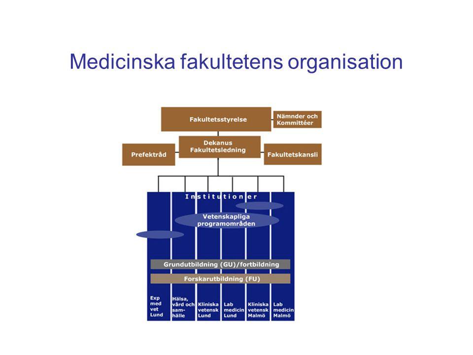 Medicinska fakultetens organisation