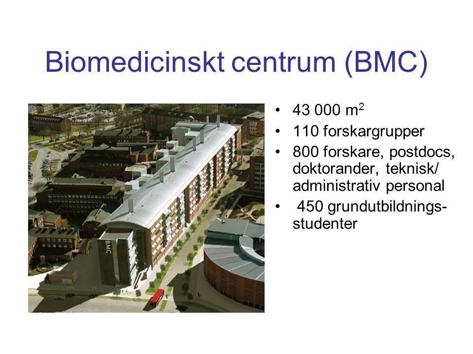 Biomedicinskt centrum (BMC) 43 000 m 2 110 forskargrupper 800 forskare, postdocs, doktorander, teknisk/ administrativ personal 450 grundutbildnings- s
