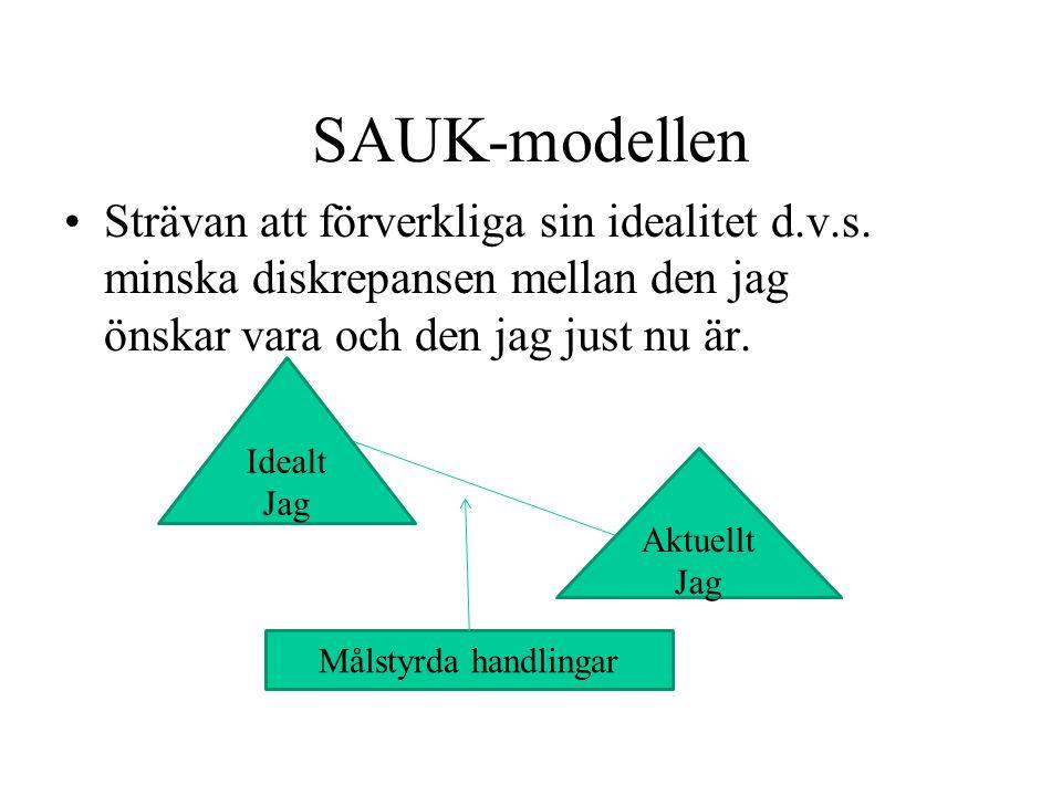 SAUK-modellen Strävan att förverkliga sin idealitet d.v.s. minska diskrepansen mellan den jag önskar vara och den jag just nu är. Idealt Jag Aktuellt