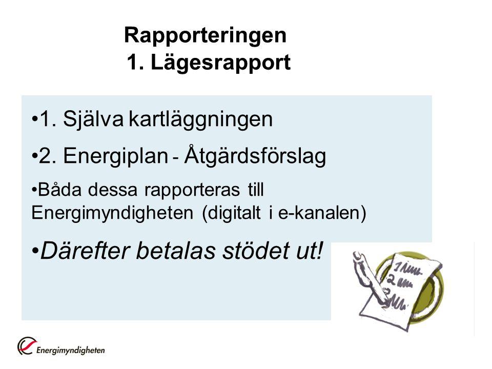 Rapporteringen 1.Lägesrapport 1. Själva kartläggningen 2.