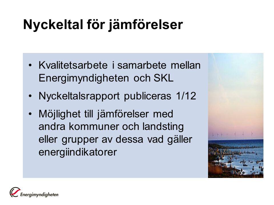 Nätverksträffar och utbildning Regionalt arbete via länsstyrelser Miljöstyrningsrådet Belysning – handbok från Uthållig kommun M.m.