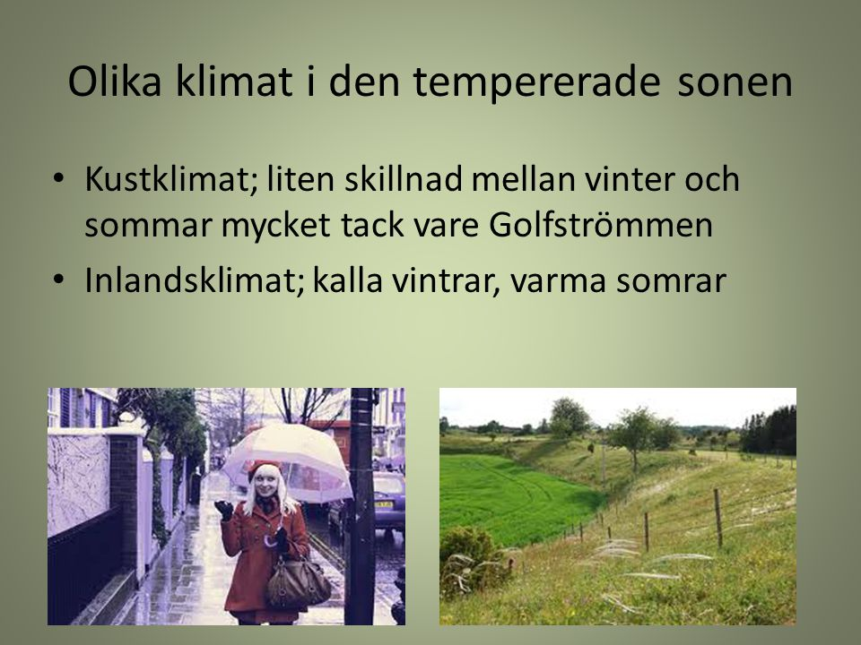 Olika klimat i den tempererade sonen Kustklimat; liten skillnad mellan vinter och sommar mycket tack vare Golfströmmen Inlandsklimat; kalla vintrar, v