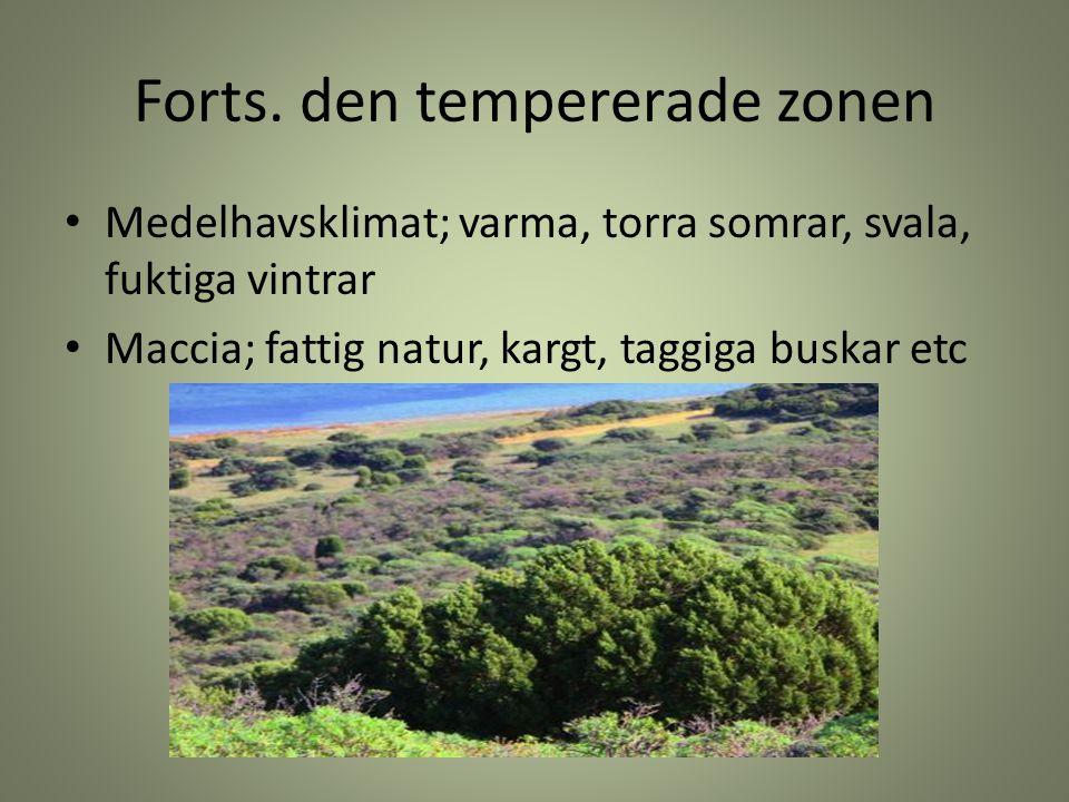 Forts. den tempererade zonen Medelhavsklimat; varma, torra somrar, svala, fuktiga vintrar Maccia; fattig natur, kargt, taggiga buskar etc
