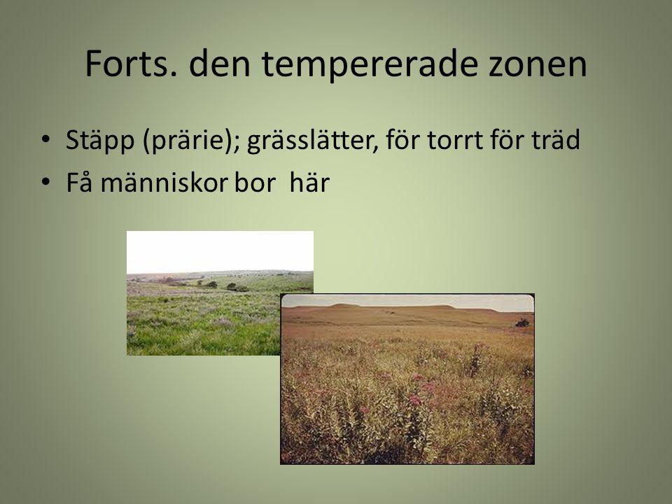 Forts. den tempererade zonen Stäpp (prärie); grässlätter, för torrt för träd Få människor bor här