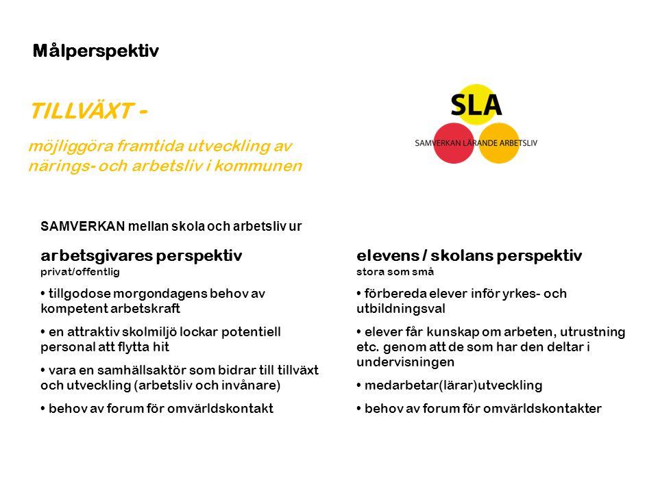 TILLVÄXT - möjliggöra framtida utveckling av närings- och arbetsliv i kommunen Målperspektiv elevens / skolans perspektiv stora som små förbereda elev