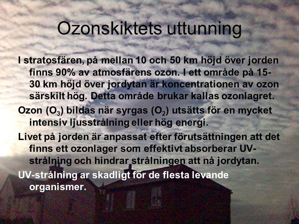 Ozonskiktets uttunning I stratosfären, på mellan 10 och 50 km höjd över jorden finns 90% av atmosfärens ozon. I ett område på 15- 30 km höjd över jord