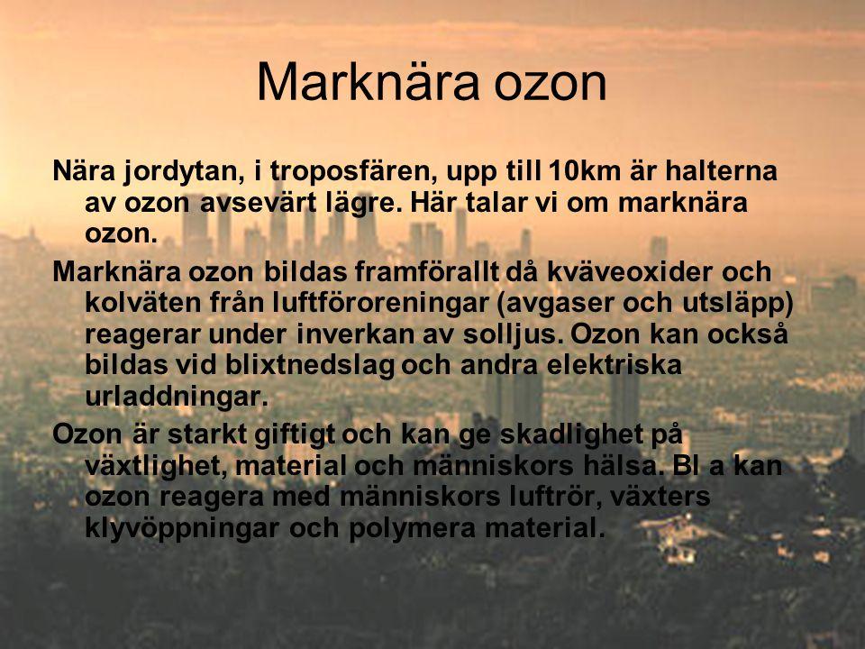 Marknära ozon Nära jordytan, i troposfären, upp till 10km är halterna av ozon avsevärt lägre. Här talar vi om marknära ozon. Marknära ozon bildas fram