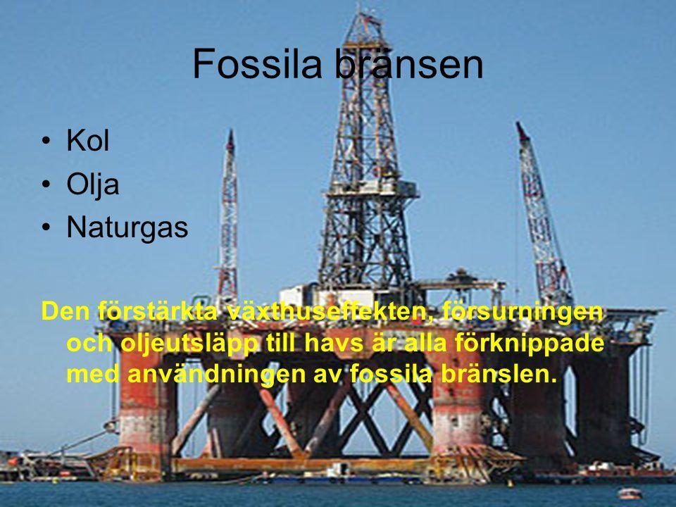 Fossila bränsen Kol Olja Naturgas Den förstärkta växthuseffekten, försurningen och oljeutsläpp till havs är alla förknippade med användningen av fossi