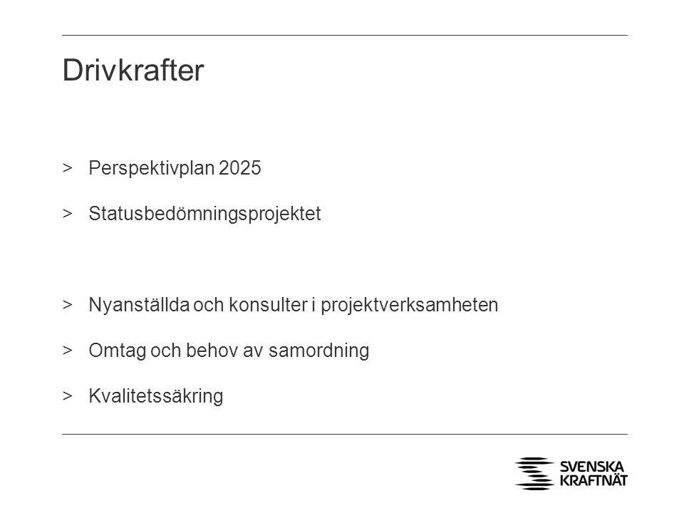 Drivkrafter >Perspektivplan 2025 >Statusbedömningsprojektet >Nyanställda och konsulter i projektverksamheten >Omtag och behov av samordning >Kvalitets