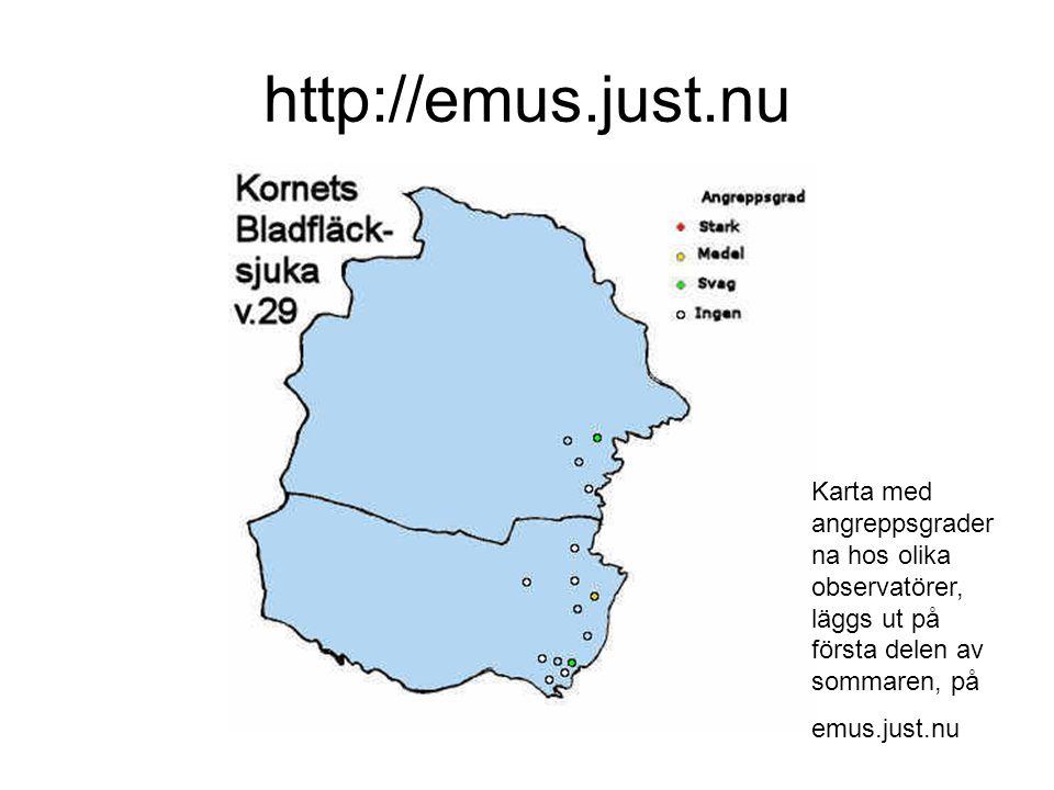 http://emus.just.nu Karta med angreppsgrader na hos olika observatörer, läggs ut på första delen av sommaren, på emus.just.nu