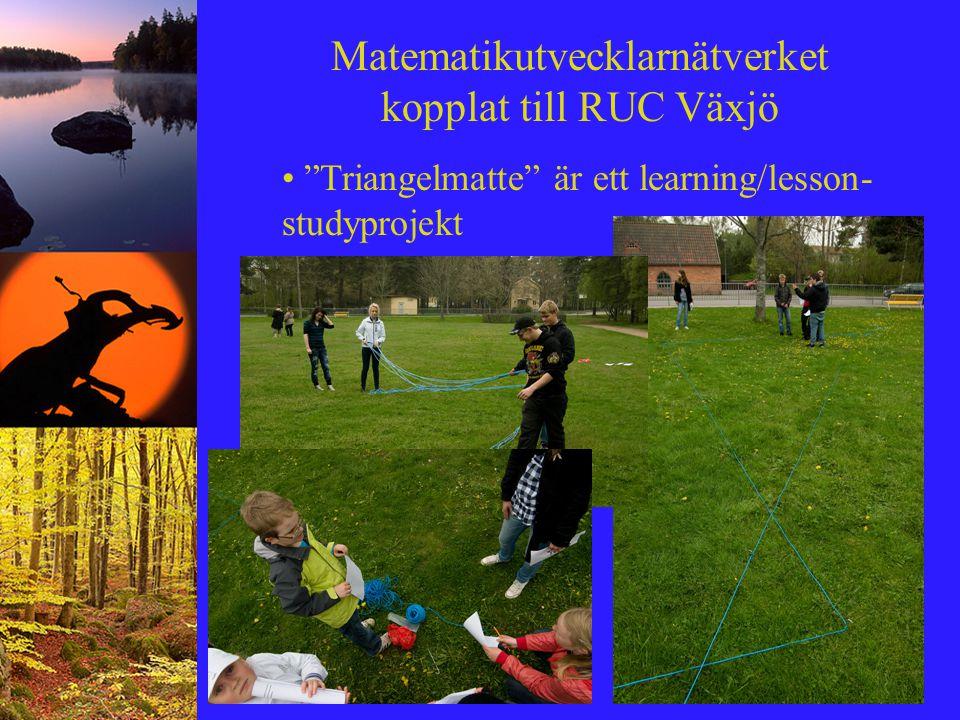 """Matematikutvecklarnätverket kopplat till RUC Växjö """"Triangelmatte"""" är ett learning/lesson- studyprojekt"""