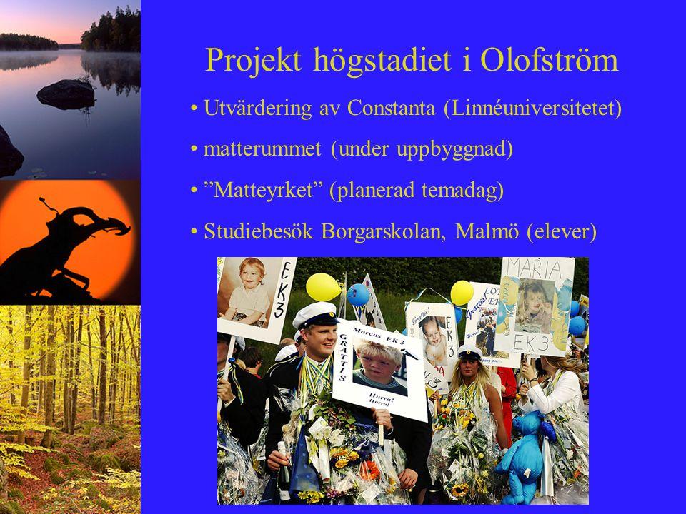"""Projekt högstadiet i Olofström Utvärdering av Constanta (Linnéuniversitetet) matterummet (under uppbyggnad) """"Matteyrket"""" (planerad temadag) Studiebesö"""