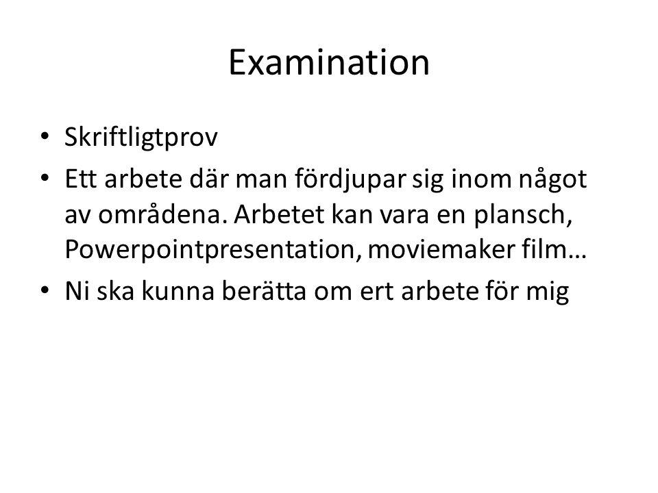 Examination Skriftligtprov Ett arbete där man fördjupar sig inom något av områdena.
