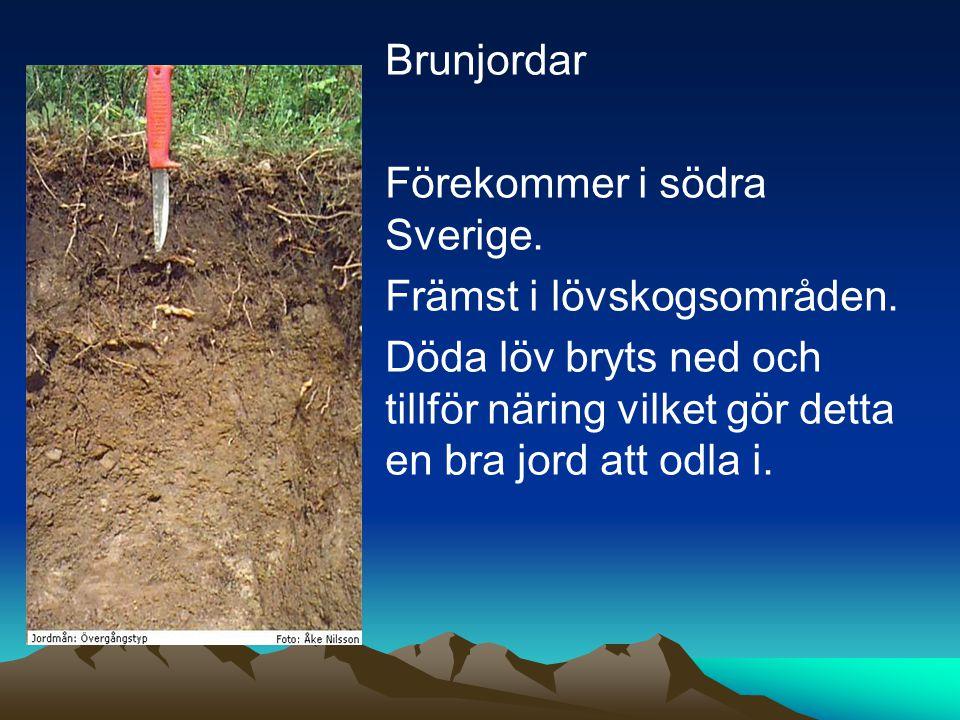 Brunjordar Brunjordar Förekommer i södra Sverige.Främst i lövskogsområden.