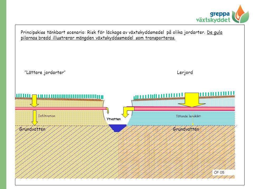 """Grundvatten """"Lättare jordarter""""Lerjord Principskiss tänkbart scenario: Risk för läckage av växtskyddsmedel på olika jordarter. De gula pilarnas bredd"""