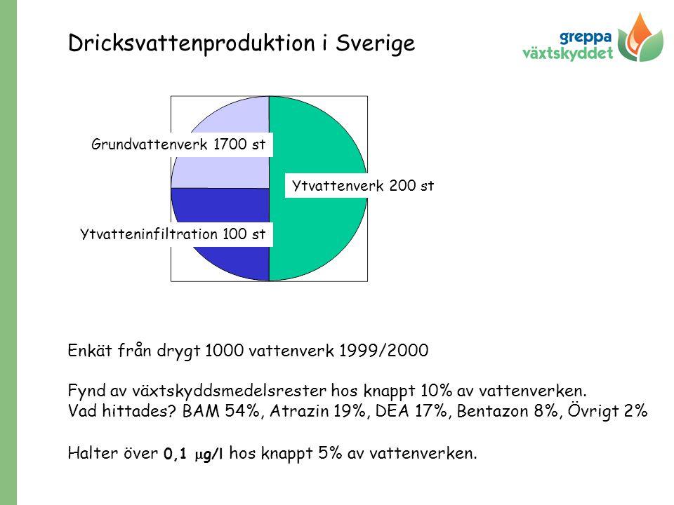 Dricksvattenproduktion i Sverige Enkät från drygt 1000 vattenverk 1999/2000 Fynd av växtskyddsmedelsrester hos knappt 10% av vattenverken. Vad hittade
