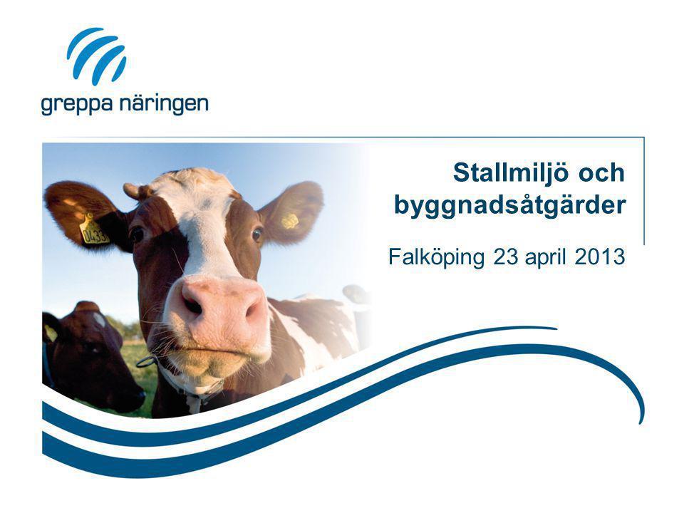 Stallmiljö och byggnadsåtgärder Falköping 23 april 2013
