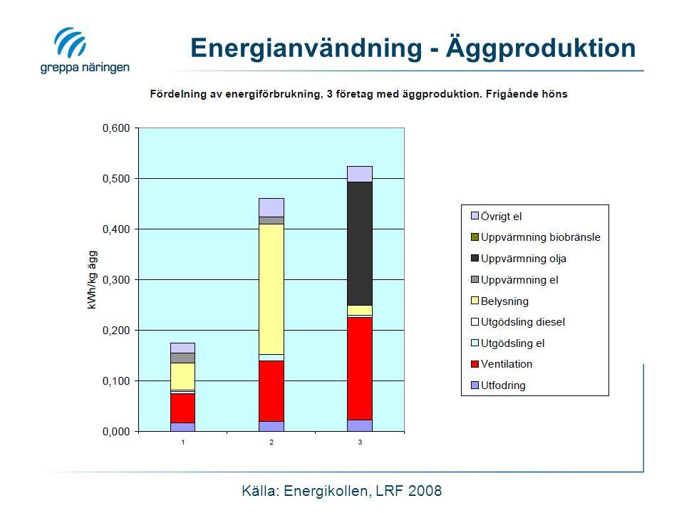 Energianvändning - Äggproduktion Källa: Energikollen, LRF 2008