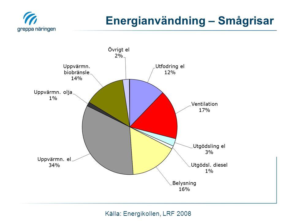 Energianvändning – Smågrisar Källa: Energikollen, LRF 2008