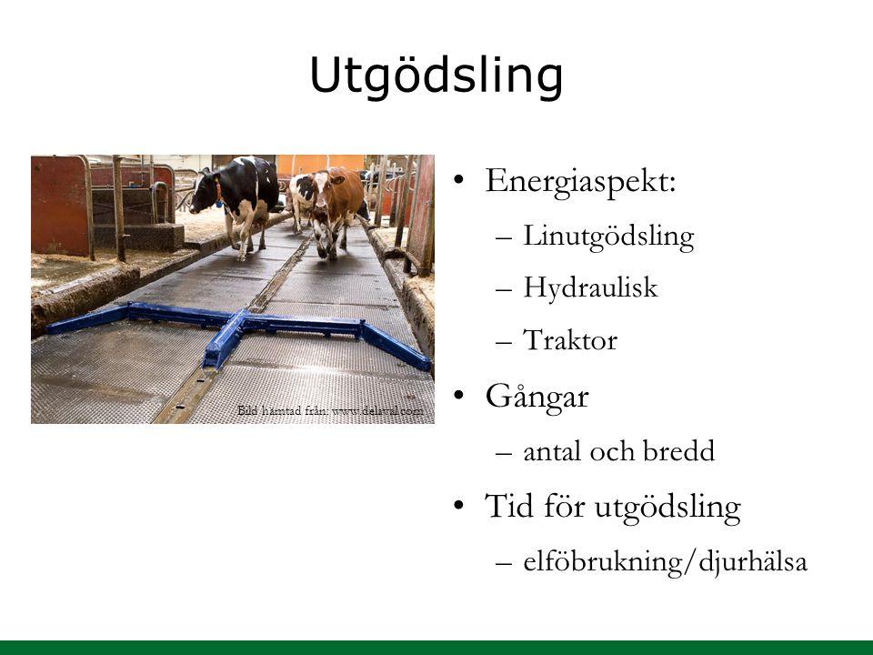 Utgödsling Energiaspekt: –Linutgödsling –Hydraulisk –Traktor Gångar –antal och bredd Tid för utgödsling –elföbrukning/djurhälsa Bild hämtad från: www.