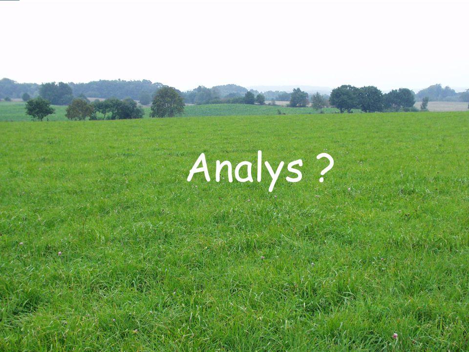 Analys ?