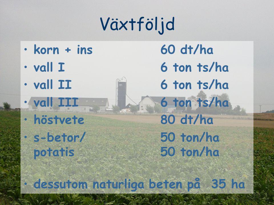 Växtföljd korn + ins60 dt/ha vall I6 ton ts/ha vall II 6 ton ts/ha vall III 6 ton ts/ha höstvete 80 dt/ha s-betor/ 50 ton/ha potatis 50 ton/ha dessutom naturliga beten på 35 ha