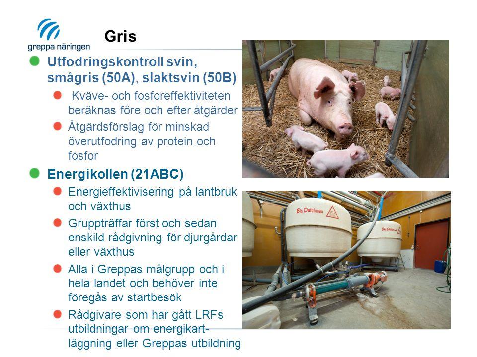 Gris Utfodringskontroll svin, smågris (50A), slaktsvin (50B) Kväve- och fosforeffektiviteten beräknas före och efter åtgärder Åtgärdsförslag för minskad överutfodring av protein och fosfor Energikollen (21ABC) Energieffektivisering på lantbruk och växthus Gruppträffar först och sedan enskild rådgivning för djurgårdar eller växthus Alla i Greppas målgrupp och i hela landet och behöver inte föregås av startbesök Rådgivare som har gått LRFs utbildningar om energikart- läggning eller Greppas utbildning