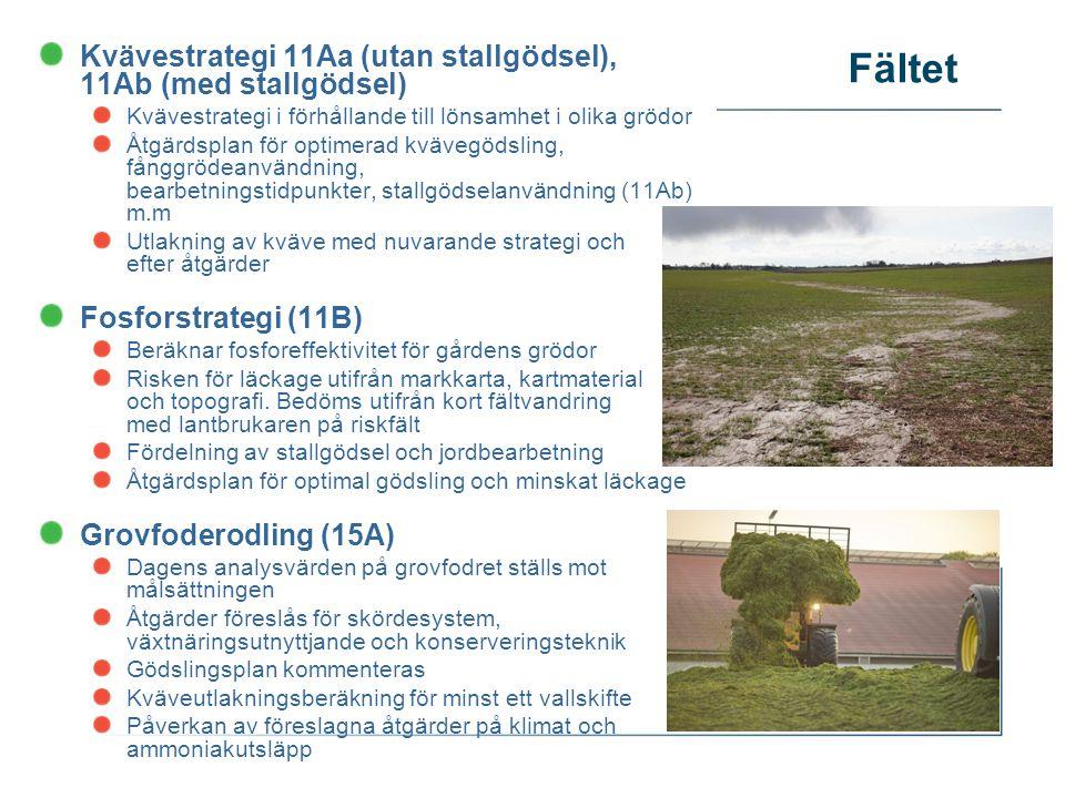 Fältet Kvävestrategi 11Aa (utan stallgödsel), 11Ab (med stallgödsel) Kvävestrategi i förhållande till lönsamhet i olika grödor Åtgärdsplan för optimerad kvävegödsling, fånggrödeanvändning, bearbetningstidpunkter, stallgödselanvändning (11Ab) m.m Utlakning av kväve med nuvarande strategi och efter åtgärder Fosforstrategi (11B) Beräknar fosforeffektivitet för gårdens grödor Risken för läckage utifrån markkarta, kartmaterial och topografi.