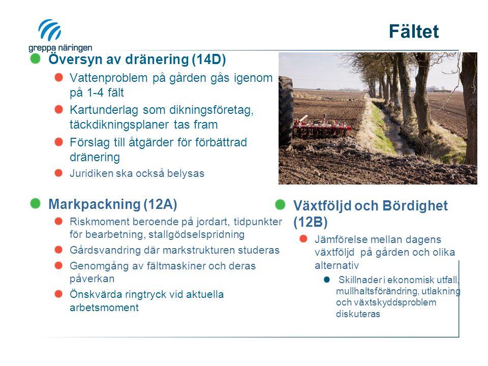 Fältet Översyn av dränering (14D) Vattenproblem på gården gås igenom på 1-4 fält Kartunderlag som dikningsföretag, täckdikningsplaner tas fram Förslag till åtgärder för förbättrad dränering Juridiken ska också belysas Markpackning (12A) Riskmoment beroende på jordart, tidpunkter för bearbetning, stallgödselspridning Gårdsvandring där markstrukturen studeras Genomgång av fältmaskiner och deras påverkan Önskvärda ringtryck vid aktuella arbetsmoment Växtföljd och Bördighet (12B) Jämförelse mellan dagens växtföljd på gården och olika alternativ Skillnader i ekonomisk utfall, mullhaltsförändring, utlakning och växtskyddsproblem diskuteras