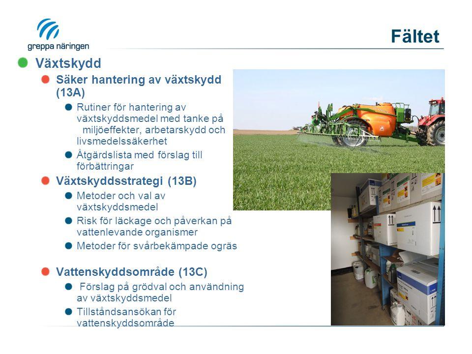 Fältet Växtskydd Säker hantering av växtskydd (13A) Rutiner för hantering av växtskyddsmedel med tanke på miljöeffekter, arbetarskydd och livsmedelssäkerhet Åtgärdslista med förslag till förbättringar Växtskyddsstrategi (13B) Metoder och val av växtskyddsmedel Risk för läckage och påverkan på vattenlevande organismer Metoder för svårbekämpade ogräs Vattenskyddsområde (13C) Förslag på grödval och användning av växtskyddsmedel Tillståndsansökan för vattenskyddsområde