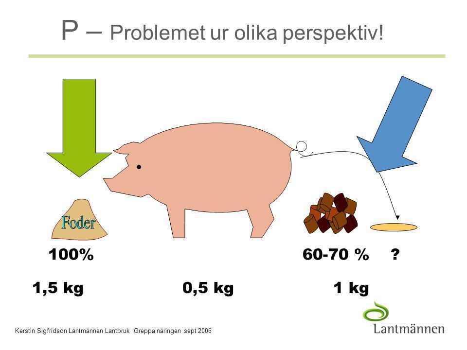 2006-03-30 Company/Dept, Author - 3 - P-problemet P – Problemet ur olika perspektiv.